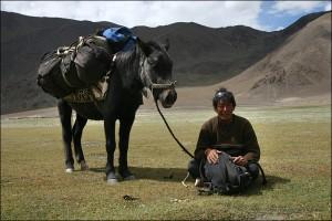 Pferdemann beim Trekking
