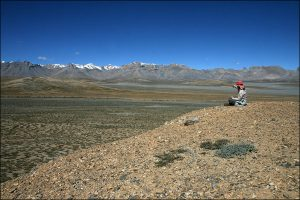 Trekking Korzok-Sarchu